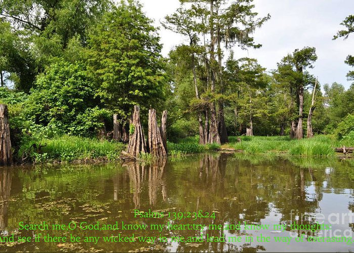 Scripture Art/louisiana Art/swamp/swampscenes/swampscene/bayou/bayous/trees/tree/body Of Water/landscape Greeting Card featuring the photograph His Powerful Word#1 by Patricia Morales