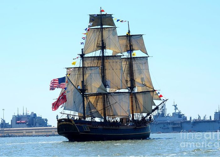 Opsail Norfolk Greeting Card featuring the photograph Hms Bounty Ahoy by Brenda Dorman