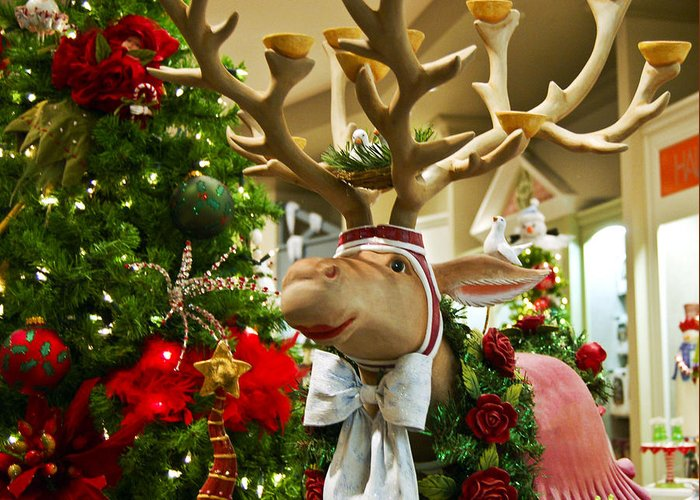 St Nick Greeting Card featuring the photograph Holiday Reindeer by Jon Berghoff