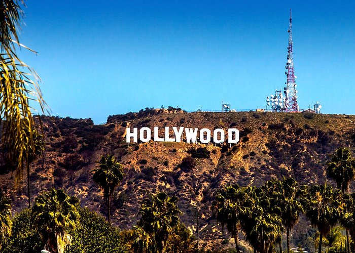 Hollywood Sign Greeting Cards