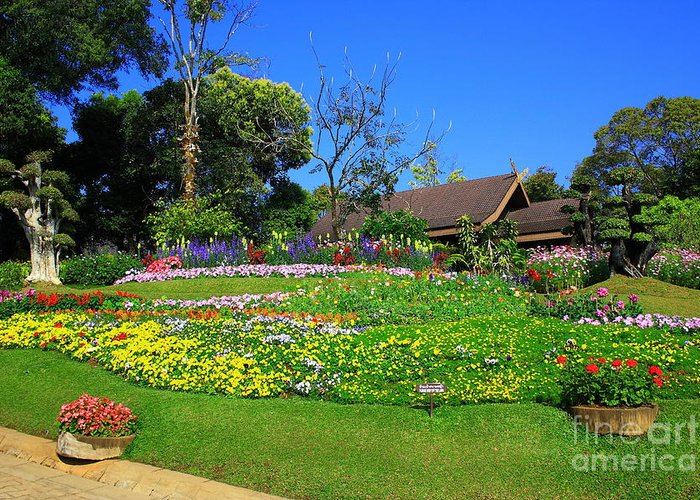 Home Greeting Card featuring the photograph Home Gardening Zones by Boon Mee