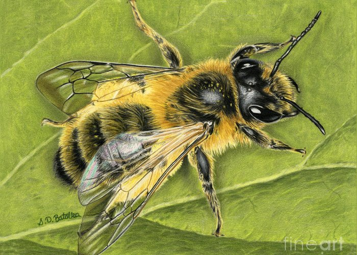 Honeybees Greeting Cards