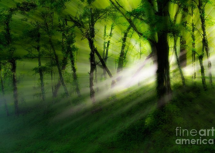 Blue Ridge Parkway Greeting Card featuring the photograph Hope Lights Eternal - A Tranquil Moments Landscape by Dan Carmichael