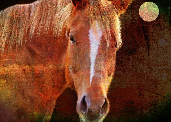 Horse Greeting Card featuring the photograph Horse 7 by Mark Ashkenazi