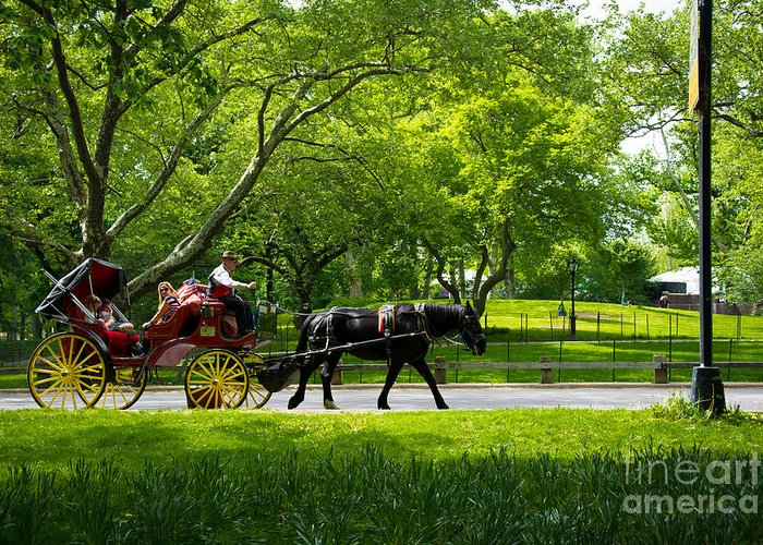 Central Park Greeting Card featuring the photograph Horse And Carriage Central Park by Amy Cicconi