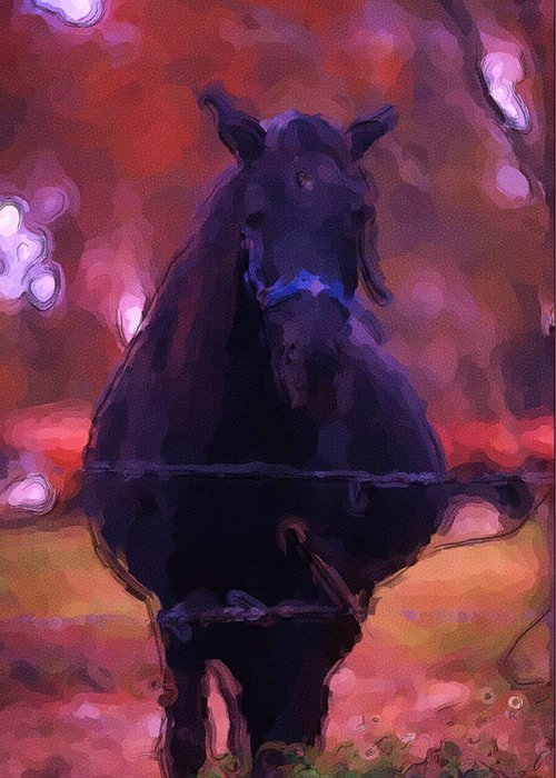 Horse Greeting Card featuring the photograph Horse In Autumn Light by George Ferrell