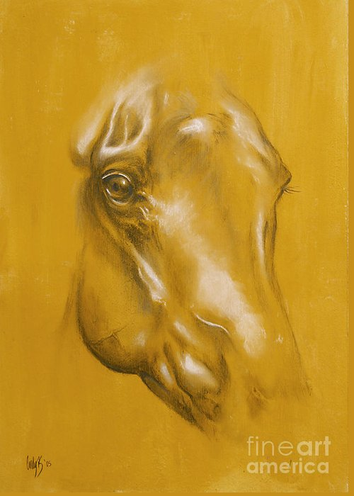 Horse Greeting Card featuring the drawing Horse Portrait by Tamer and Cindy Elsharouni