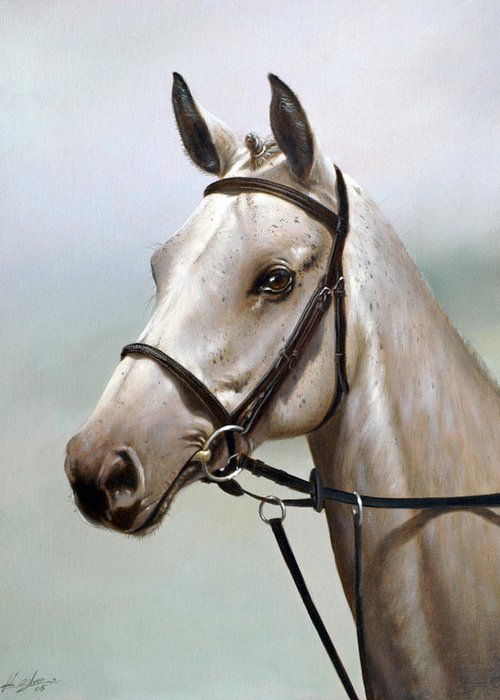 Horse Paintings Greeting Card featuring the painting Horse Portrait I by John Silver