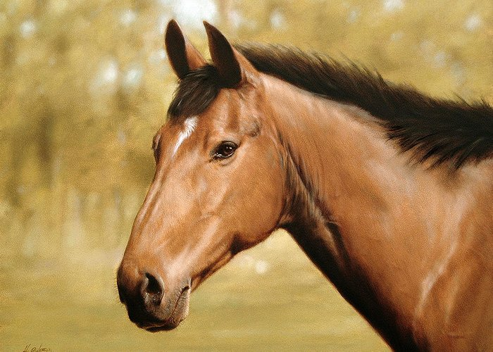 Horse Paintings Greeting Card featuring the painting Horse Portrait II by John Silver
