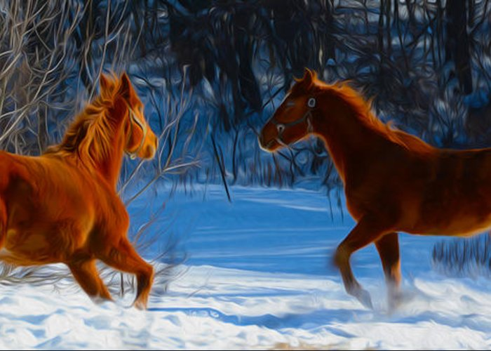 Horse Greeting Card featuring the photograph Horses At Play by Tracy Winter
