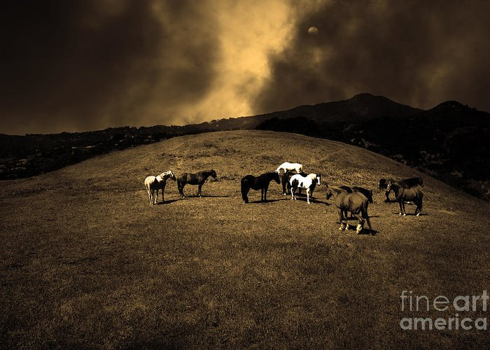 Marin Greeting Card featuring the photograph Horses Of The Moon Mill Valley California 5d22673 Sepia by Wingsdomain Art and Photography