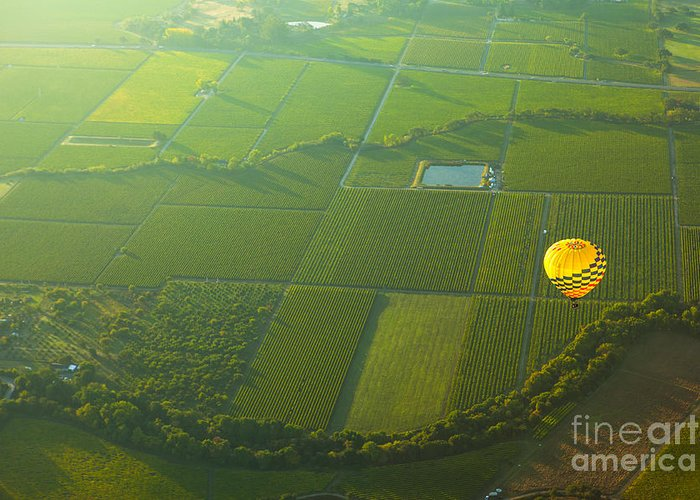 California Greeting Card featuring the photograph Hot Air Balloon Over Napa Valley California by Diane Diederich