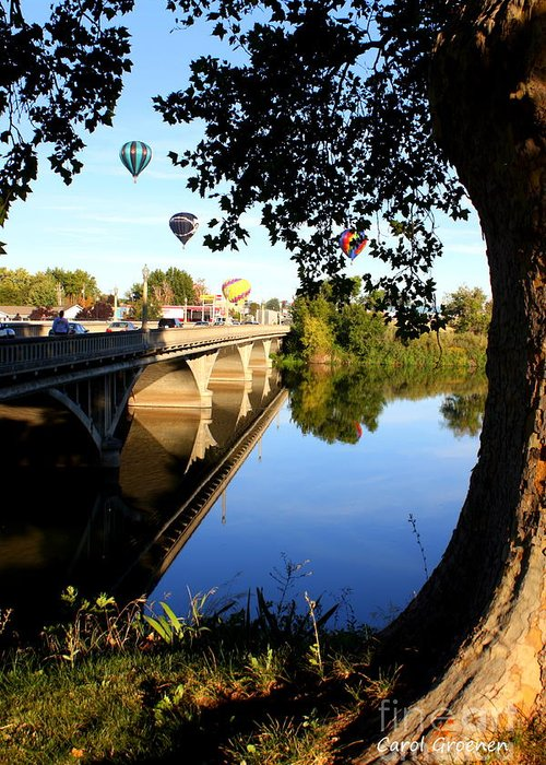 Prosser Greeting Card featuring the photograph Hot Air Balloons Through Tree by Carol Groenen