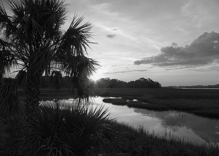 Black And White Greeting Card featuring the photograph Hot June Sunrise I    Bw by Sheri McLeroy