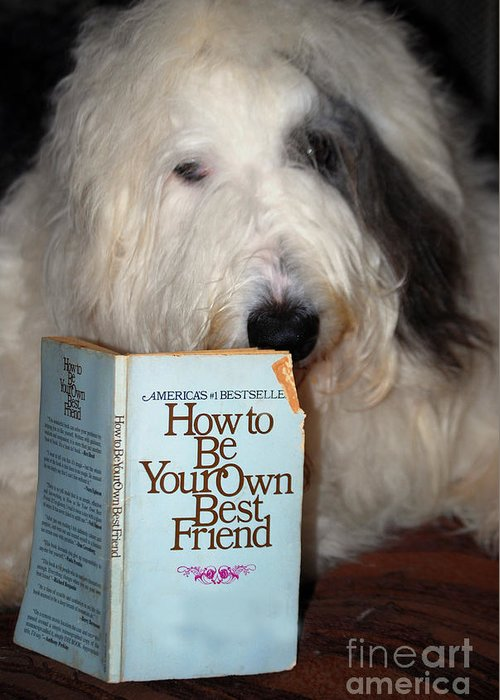Dog Greeting Card featuring the painting How To Be Your Own Best Friend by Nancy Bradley