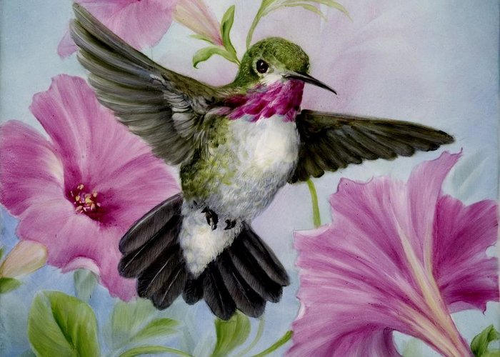 Humming Bird Greeting Card featuring the painting Hummer In Petunias by Summer Celeste
