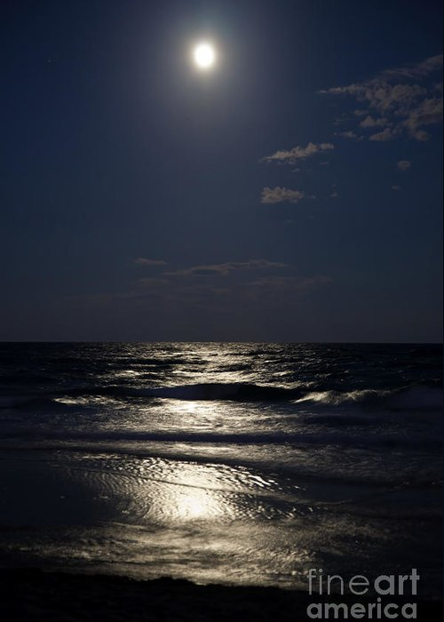 Hunters Moon Iv Greeting Card featuring the photograph Hunter's Moon Iv by Michelle Wiarda