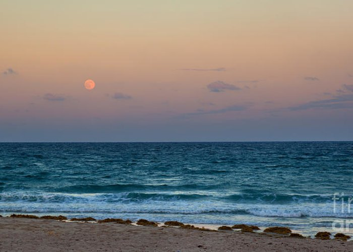 Hunters Moon Greeting Card featuring the photograph Hunter's Moon by Michelle Wiarda