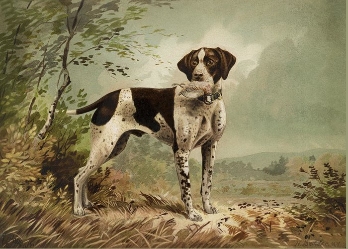 Haunting Dog Greeting Card featuring the painting Hunting Dog Circa 1879 by Aged Pixel