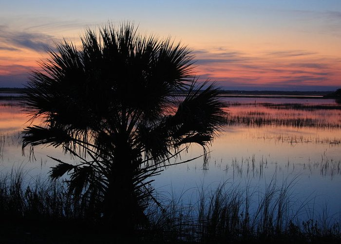 Hunting Island Greeting Card featuring the photograph Hunting Isalnd Tidal Marsh by Mountains to the Sea Photo