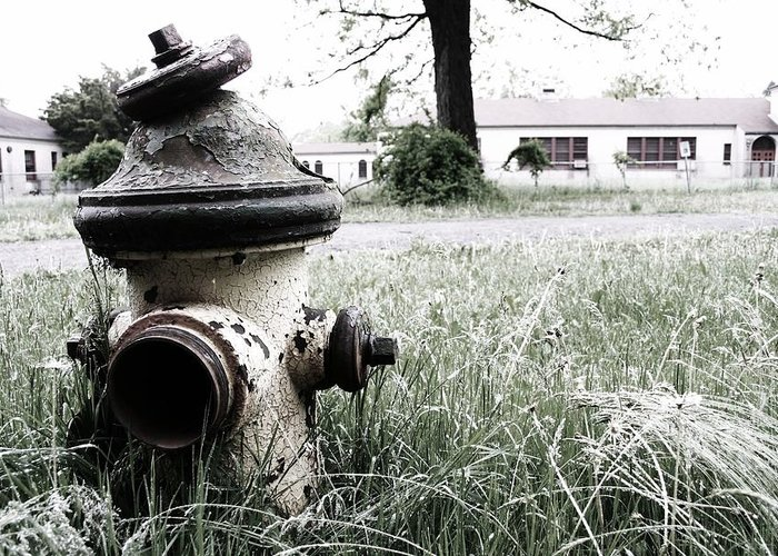 Fire Hydrant Greeting Card featuring the photograph Hydrant by Robin Mahboeb