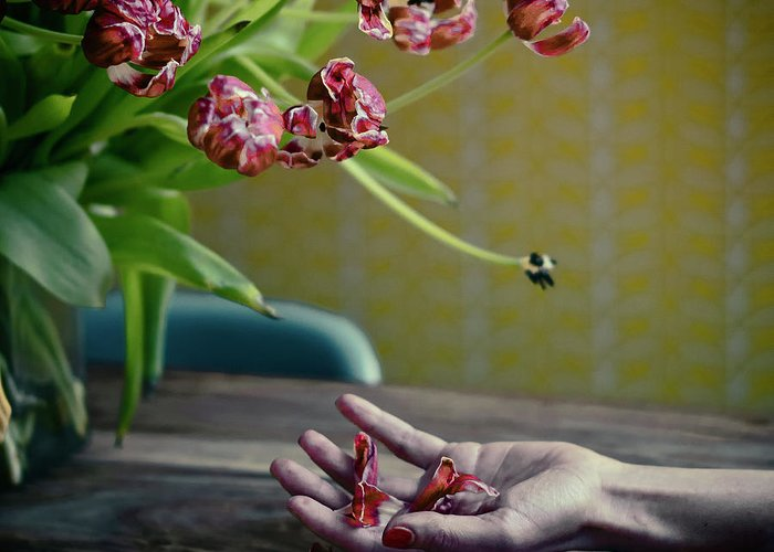 Still Life Greeting Card featuring the photograph I Will Love You Better.... by Ambra