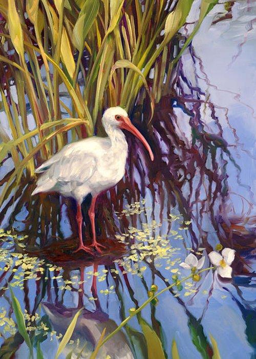 Florida Swamp Reflection Greeting Cards