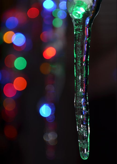 Maine Ice Storm Greeting Card featuring the photograph Ice Storm Christmas by Ken DErrico