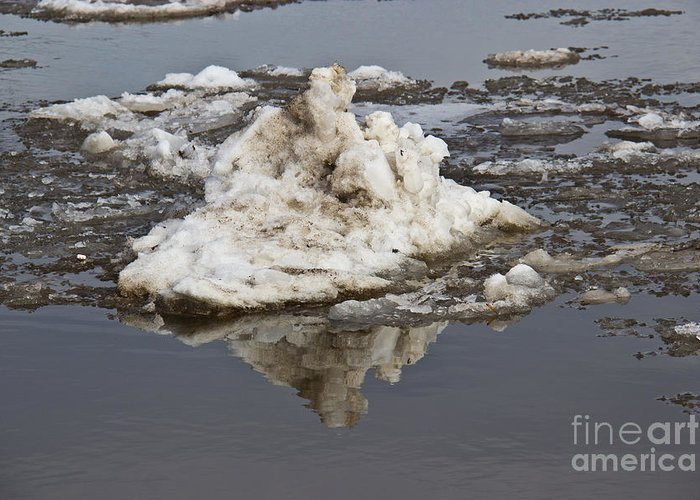 Nature Greeting Card featuring the photograph Iceberg Mini by Tom Gari Gallery-Three-Photography