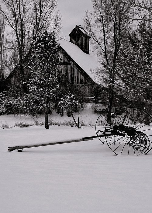 Winters Greeting Card featuring the photograph Idle Time - Waiting For Spring by Steven Milner