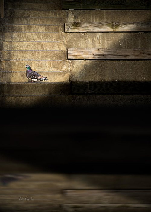 Stair Greeting Card featuring the photograph Il Piccolo Guardiano by Bob Orsillo