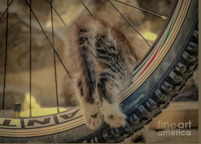 Emma Greeting Card featuring the photograph I'll Ride Myself by Lyudmila Prokopenko