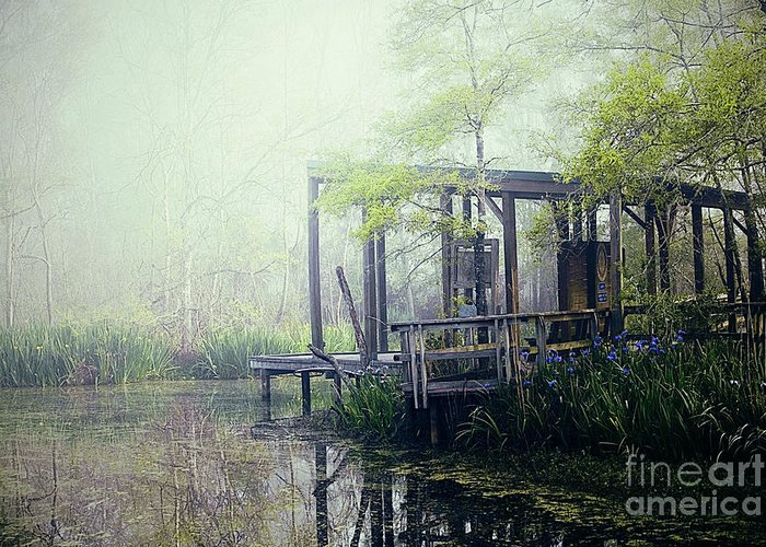 Bayou Greeting Card featuring the photograph I'm Going Back Someday by Katya Horner