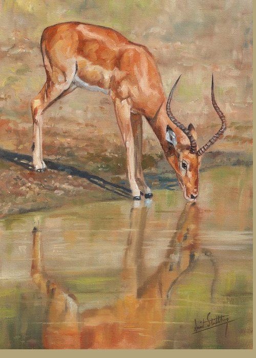 Impala Greeting Card featuring the painting Impala by David Stribbling