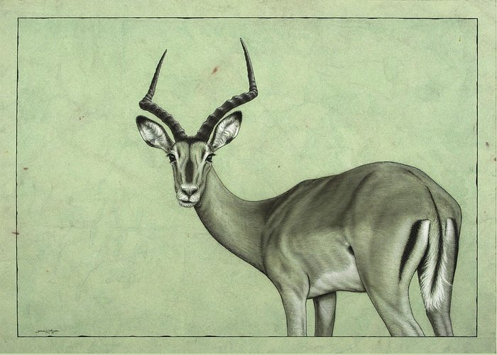 Impala Greeting Card featuring the painting Impala by James W Johnson