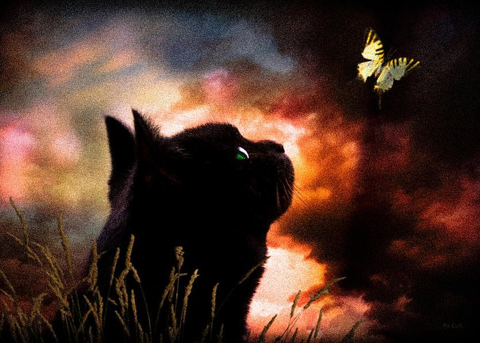 Sky Greeting Card featuring the photograph In A Cats Eye All Things Belong To Cats. by Bob Orsillo