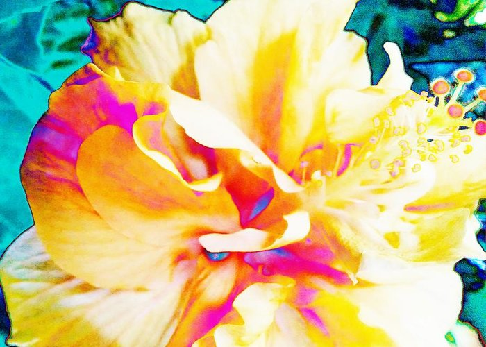 Bright Greeting Card featuring the photograph In Color by Debra Wynn