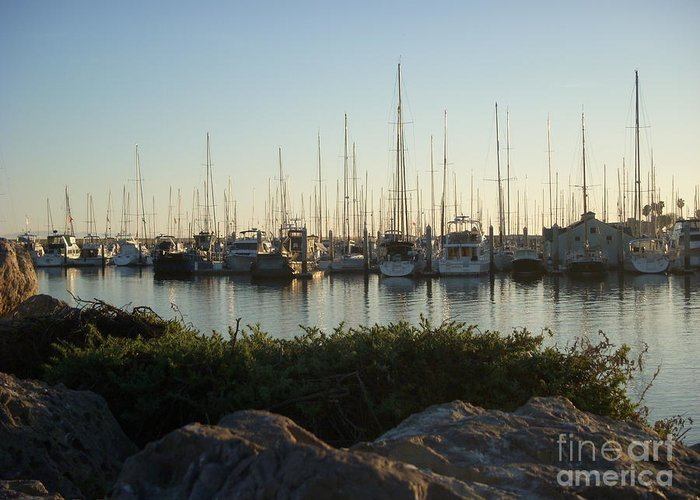Sailboats Greeting Card featuring the photograph In Harbor by Amy Strong