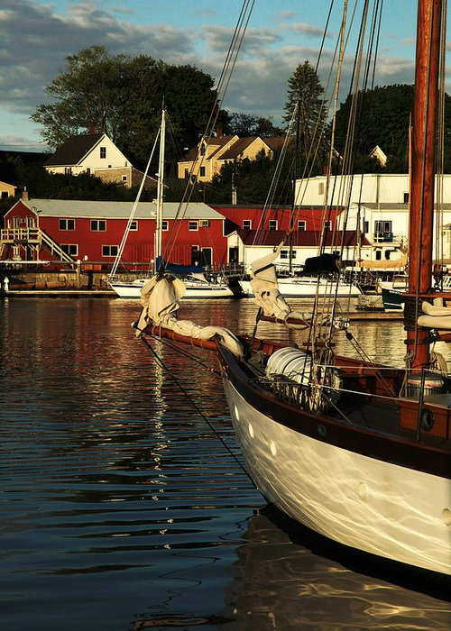Harbor Greeting Card featuring the photograph In Harbor by Karol Livote