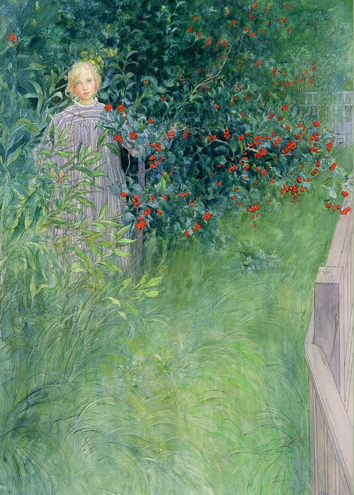 Girl Greeting Card featuring the drawing In The Hawthorn Hedge by Carl Larsson