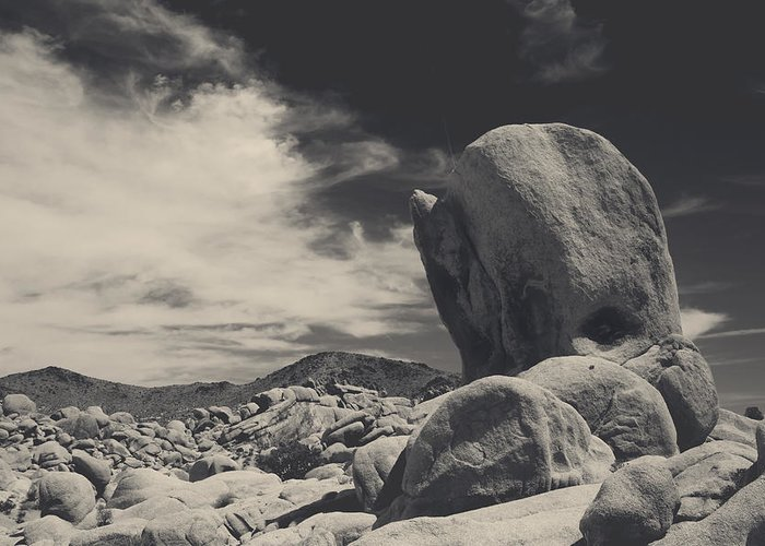 Joshua Tree National Park Greeting Card featuring the photograph In This Strange Land by Laurie Search
