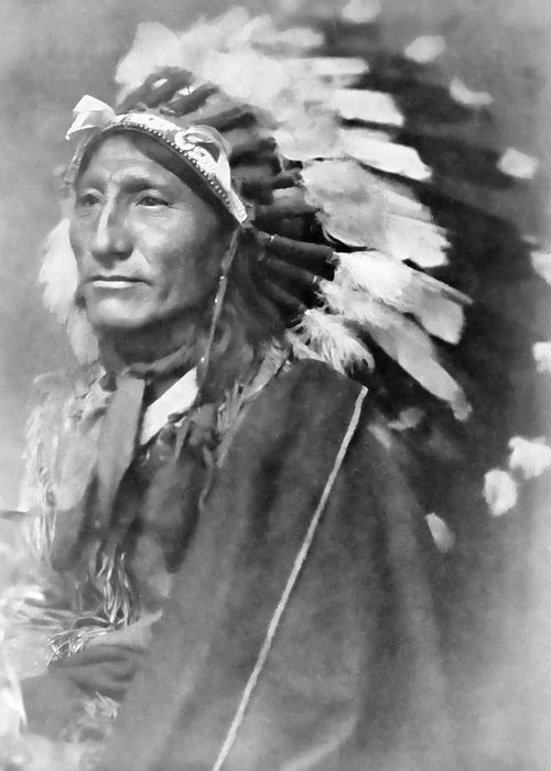 Indian Greeting Card featuring the photograph Indian Chief - 1902 by Daniel Hagerman