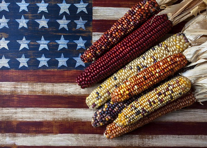 Folk Art American Flag Greeting Card featuring the photograph Indian Corn On American Flag by Garry Gay