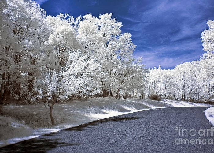 Landscape Greeting Card featuring the photograph Infrared Road by Anthony Sacco