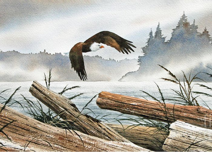Eagle Fine Art Print Greeting Card featuring the painting Inland Sea Eagle by James Williamson
