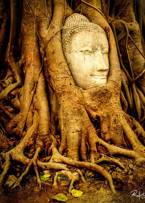 Ayutthaya Greeting Card featuring the photograph Inner Strength by Allan Rufus