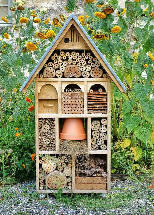 Craftsman Greeting Card featuring the photograph Insect Hotel by Olivier Le Queinec
