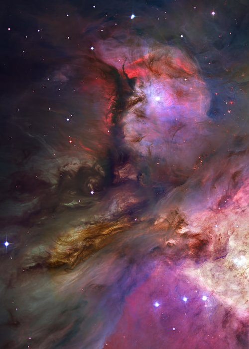 Messier 42 Greeting Card featuring the photograph Inside Orion by Ricky Barnard