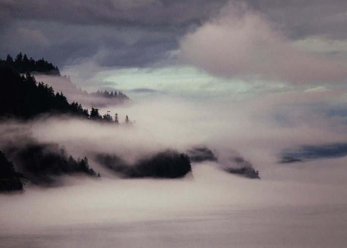 Fog Greeting Card featuring the photograph Inside Passage In The Mist by Vicki Jauron