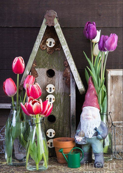 Barn Greeting Card featuring the photograph Inside The Garden Shed by Edward Fielding
